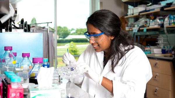 A student studies samples in a lab.