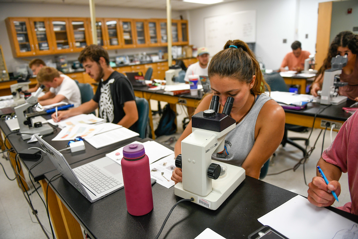 Students study in a lab