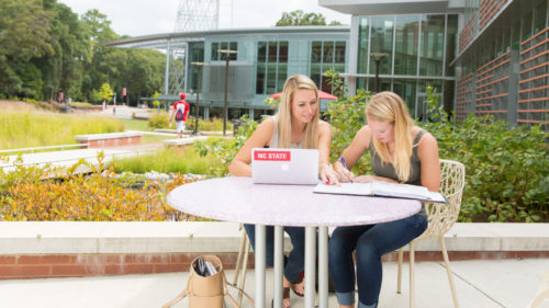 Students studying outside Talley